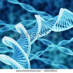 stock-photo-high-resolution-render-of-dna-double-helix-160259612