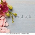 stock-photo-orchid-flower-on-wooden-background-with-spa-stones-192903407