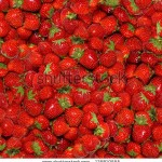 stock-photo-seamless-texture-of-juicy-strawberries-125810555