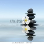 stock-photo-zen-spa-concept-background-zen-massage-stones-with-frangipani-plumeria-flower-in-water-reflection-157447103
