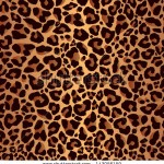stock-vector-leopard-pattern-repeating-background-143056159