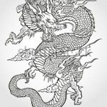 stock-vector-tradition-asian-dragon-illustration-64115869