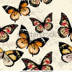 stock-vector-vector-seamless-wallpaper-pattern-with-vintage-butterflies-for-design-159254003