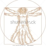 stock-vector-vector-vitruvian-man-55246564