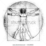 stock-vector-vetruvian-man-human-anatomy-study-by-leonardo-da-vinci-line-graphic-vector-illustration-172129955